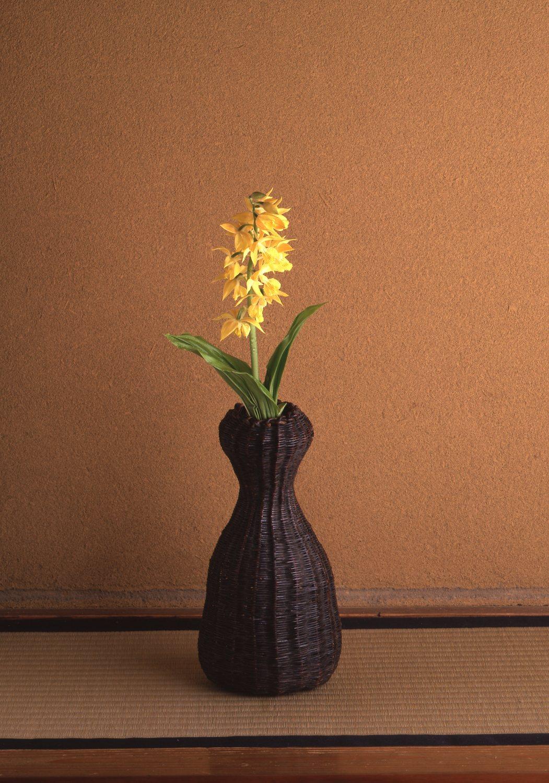 【今月の茶花】 5月の茶花