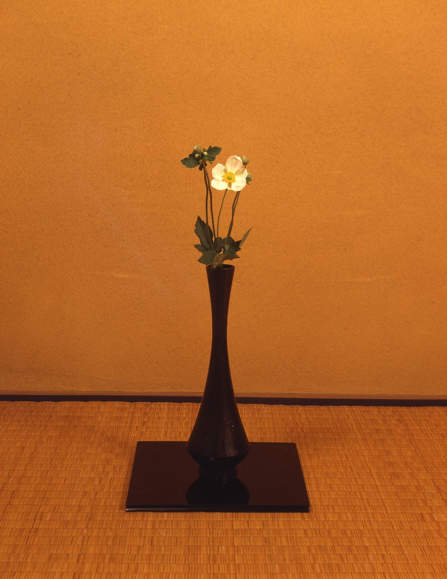 【今月の茶花】 9月の茶花