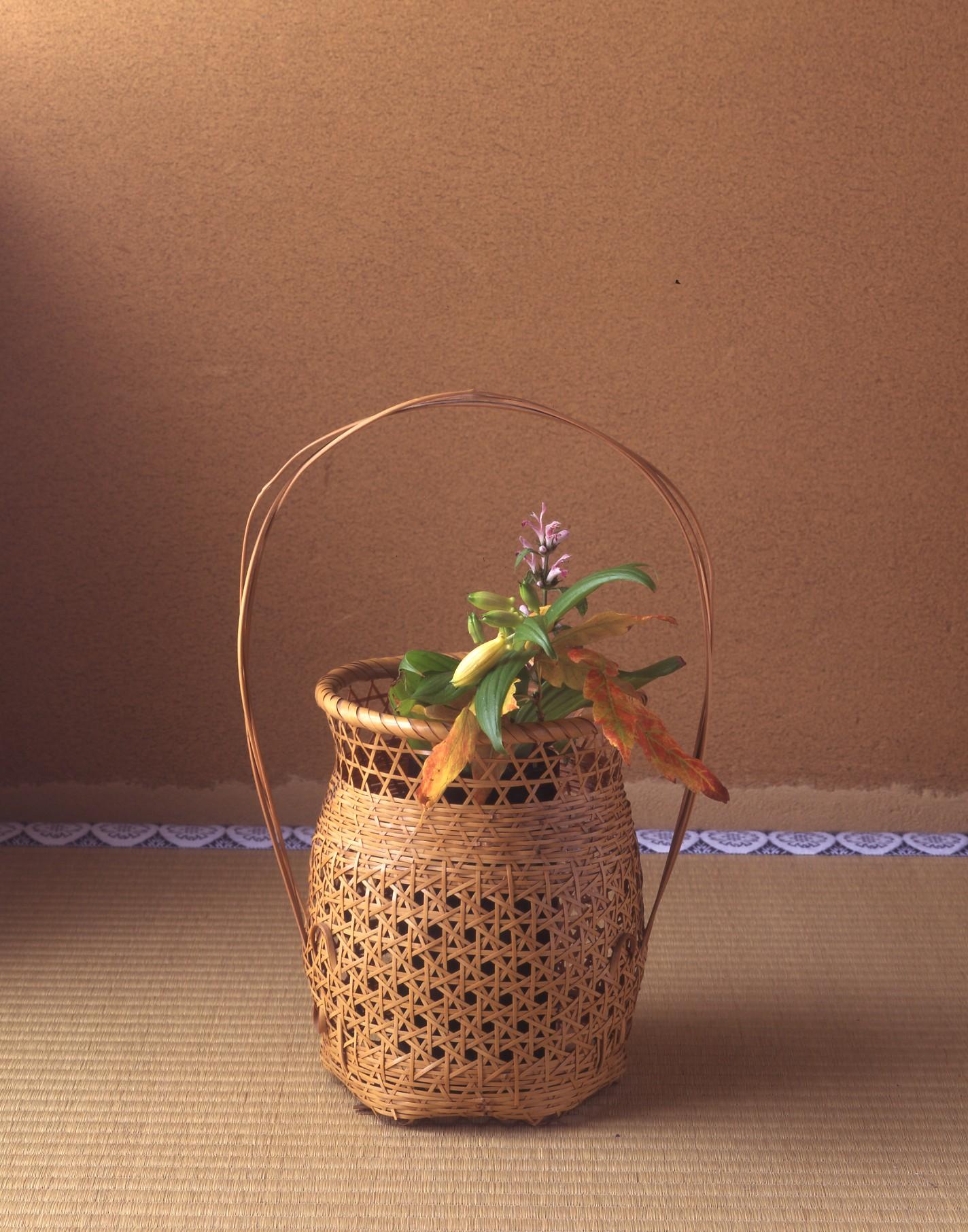 【今月の茶花】 10月の茶花