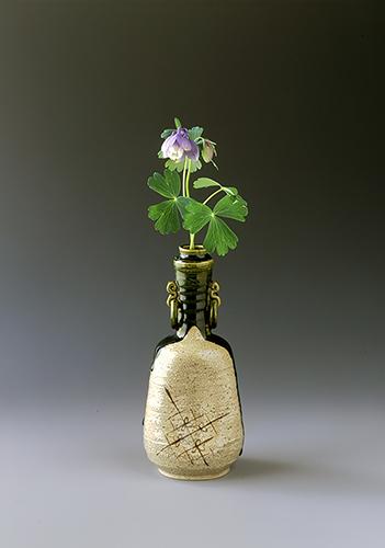 【今月の茶花】平成30年04月の茶花