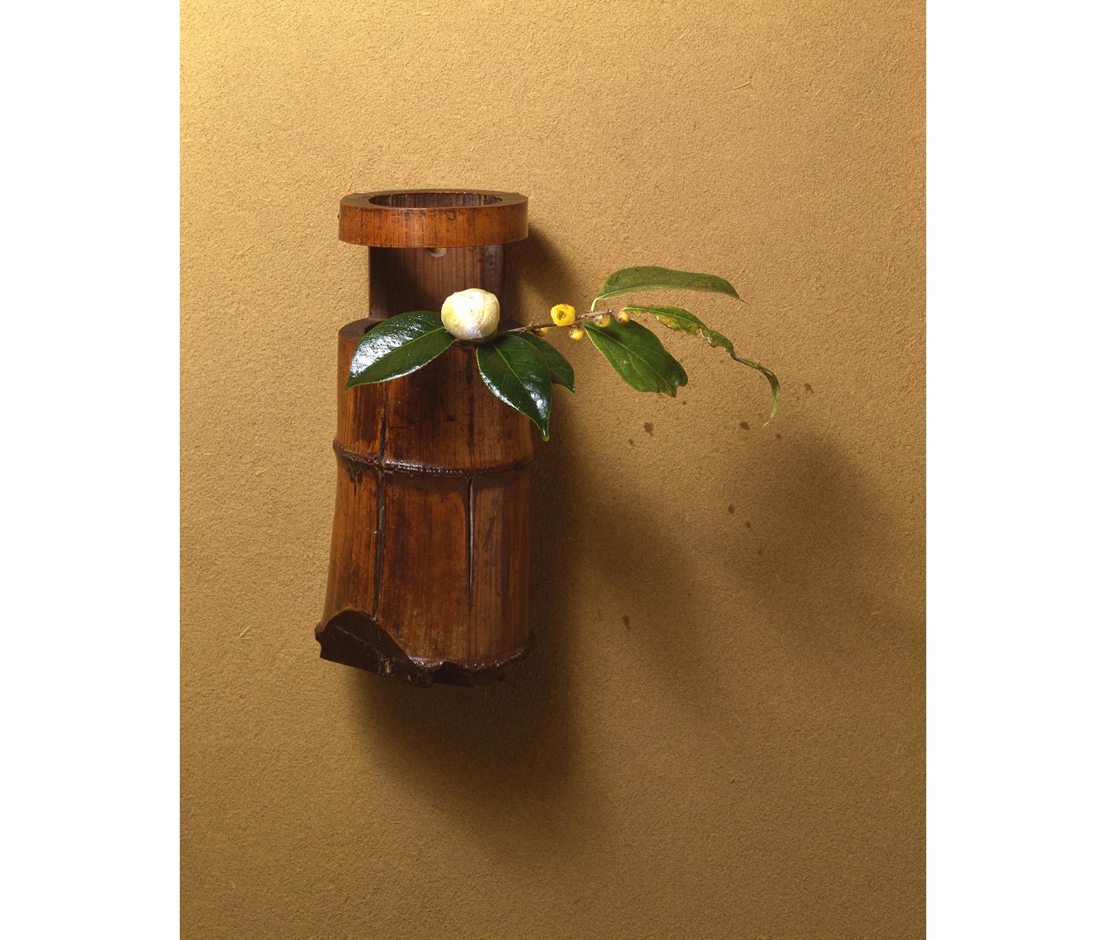 【今月の茶花】平成30年12月の茶花