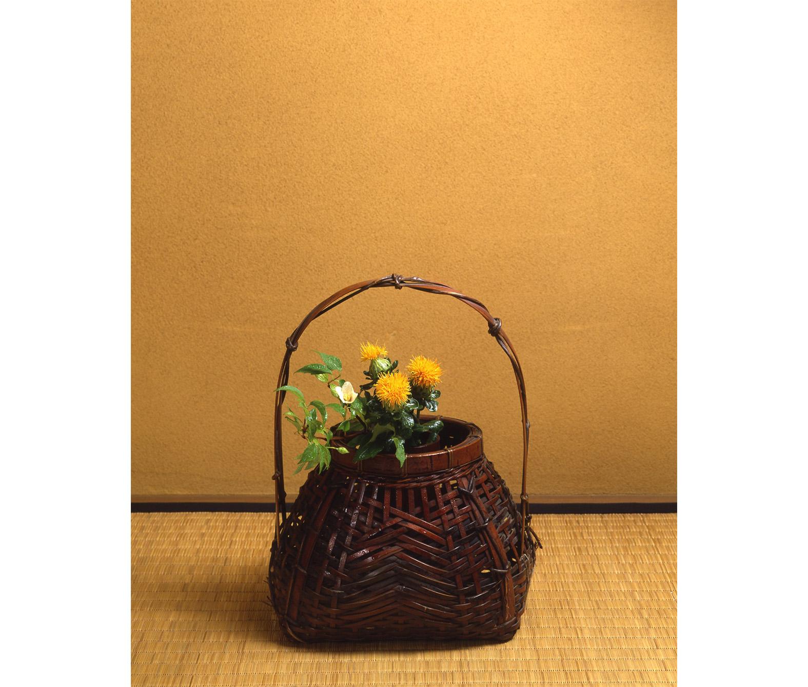 【今月の茶花】令和元年06月の茶花